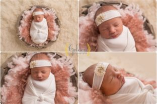 Long Grove IL baby photographer